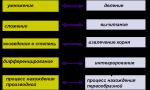 """Как находить первообразную функции примеры – Лекция """"Первообразная. Понятие первообразной. Основное свойство первообразной функции"""" (11-й класс)"""
