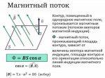 Магнитное поле силовые линии – Магнитное поле. Закон Ампера. Магнитная индукция. Анализ закона Ампера. Свойства силовых линий магнитного поля. Поток магнитной индукции. Магнитная проницаемость.